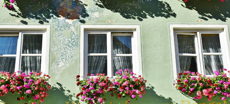window-boxes-with-flowers