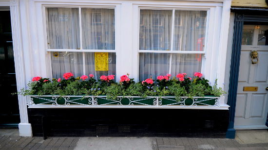 Window boxes in England