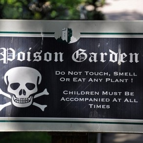 world's most poisonous garden