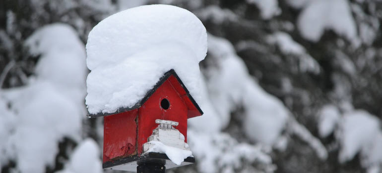 house-for-winter