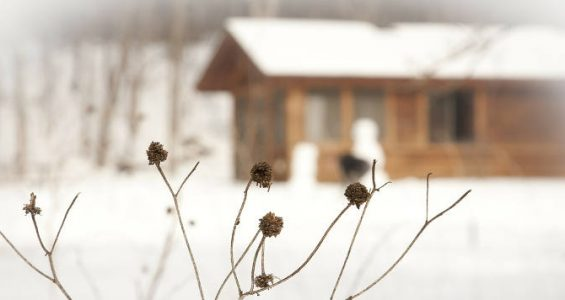 winterise-house-tips