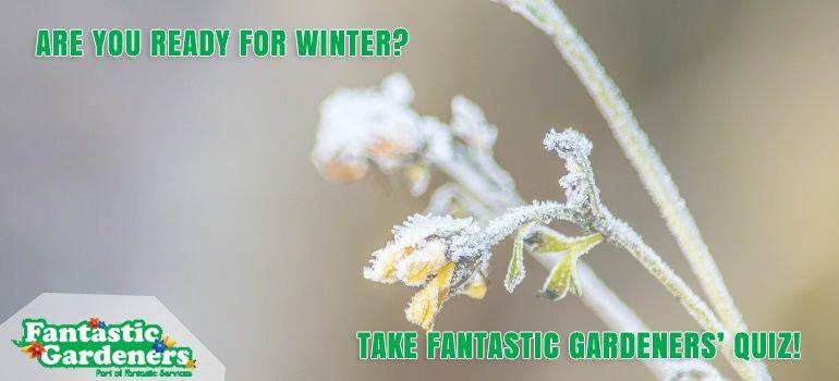 fantastic-gardeners-winter-quiz
