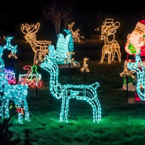 garden-christmas-decoration