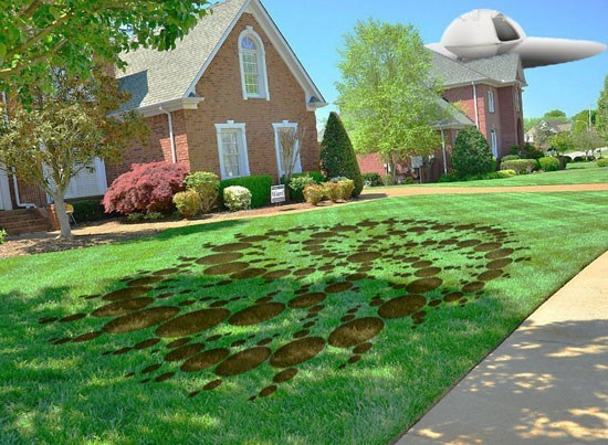 Alien Crop Circle In Front of House