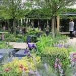 RHS Chelsea Flower Show 2016: Medal Winners and all the Highlights