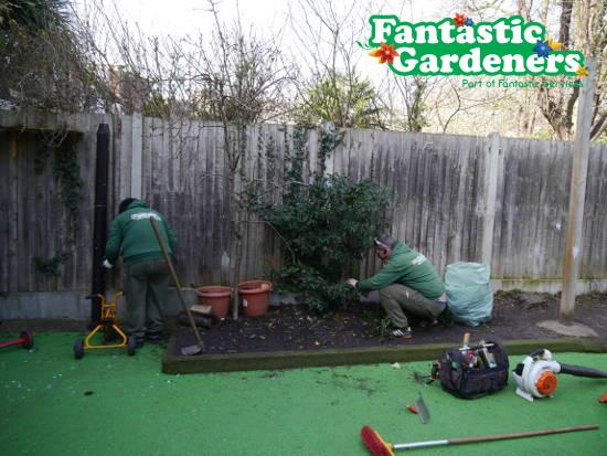 Fantastic Gardeners pruning and weeding