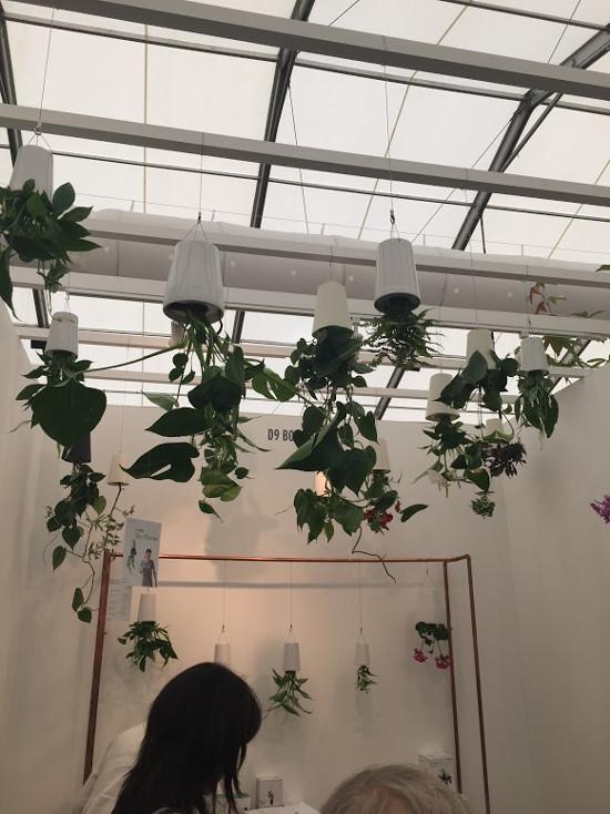 hanging upside down flower pots