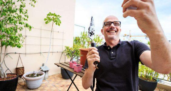 plants that make you energised thumbnail