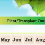 Garden Planner [Infographic]