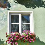 Why You Need Window Boxes?