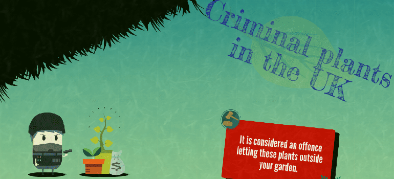 fantastic-gardeners-criminal-plants-uk-header