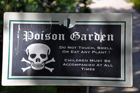 world's most poisonous garden