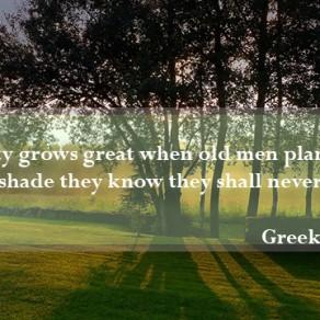 gardening quote