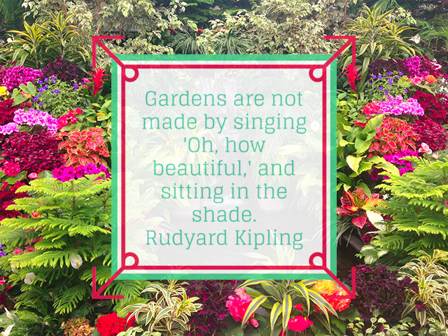 12 Gardening Quotes To Inspire The Gardener In You