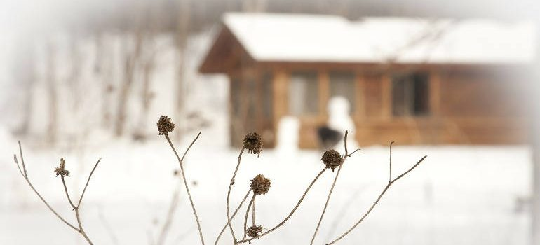 winterise-house-tips