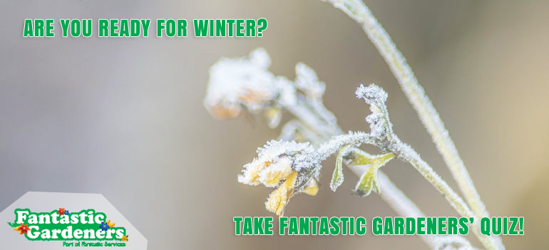 fantastic-gardeners-winter-quiz