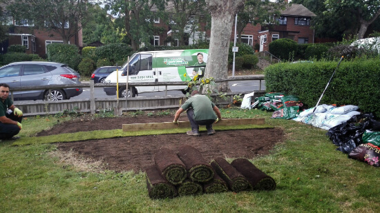 re-turfing a lawn - lawn care service 2015