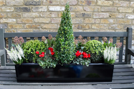 Window boxes in ealing