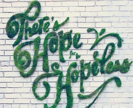 Moss Graffiti on Wall