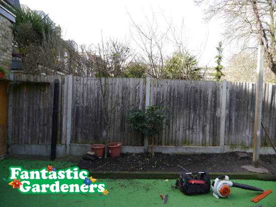 Cleared garden and gardening tools