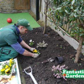 fantastic gardeners planting flowers