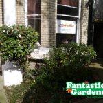 Fantastic Gardeners to the Rescue - Nursery Garden Gets New Look