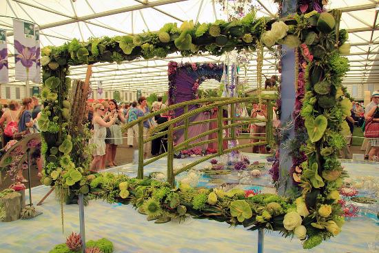 visiting chelsea flower show