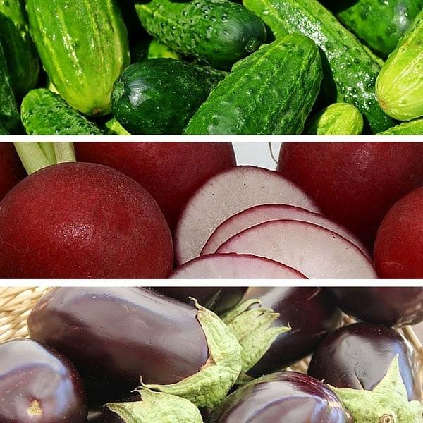cucumbers radishes eggplants