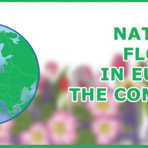 National flowers of countries in Europe