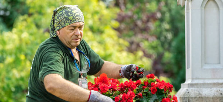 Choices Choices How to Pick a Reliable Gardening Company