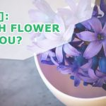 [Quiz] Which Flower Are You?