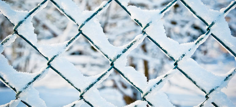 how-to-protect-your-garden-from-frost-with-fences