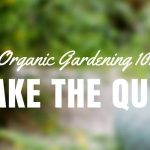[QUIZ] Test Your Organic Gardening Knowledge