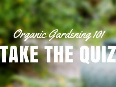 organic gardening 101 quiz