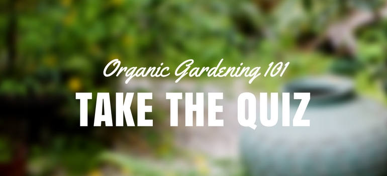 [QUIZ] Test Your Organic Gardening Knowledge   Fantastic Gardeners Blog