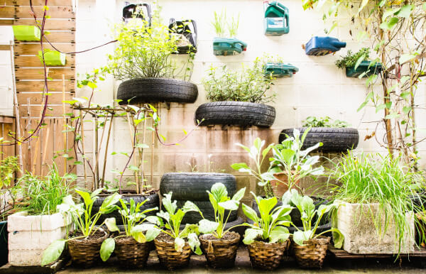 container gardening in a garage