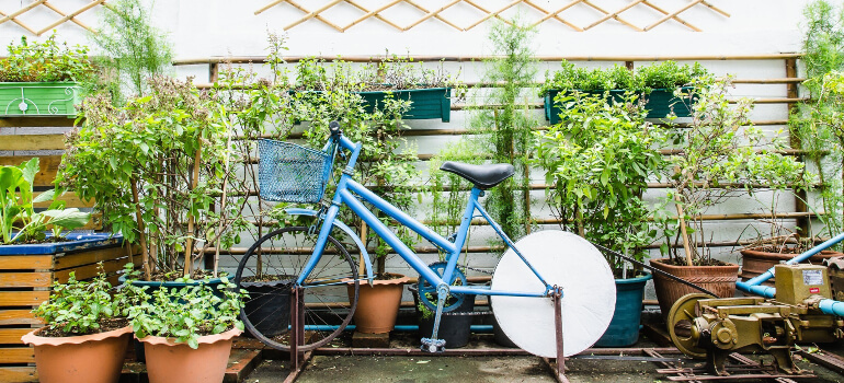 container gardening pots and bike thumbnail