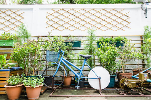 container gardening pots and bike