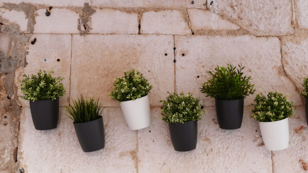 container pots on wall
