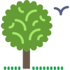 006-tree