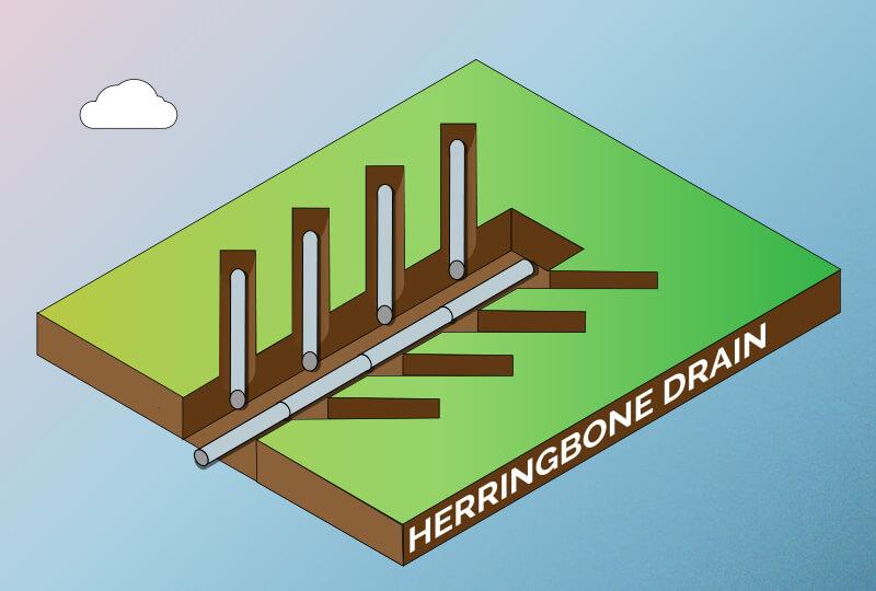 herringbone drain
