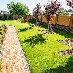 How to Avoid Summer Drought Stress Damage to Your Lawn