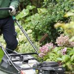 What does regular garden maintenance include and how much does it cost?