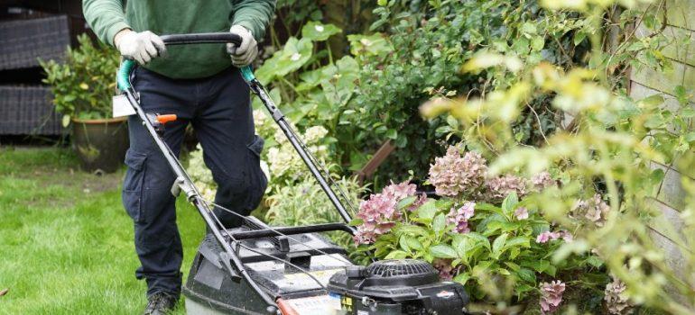 garden-maintenance-cost