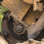 Ways to Get Rid Of a Tree Stump?